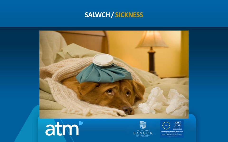 SALWCH / SICKNESS