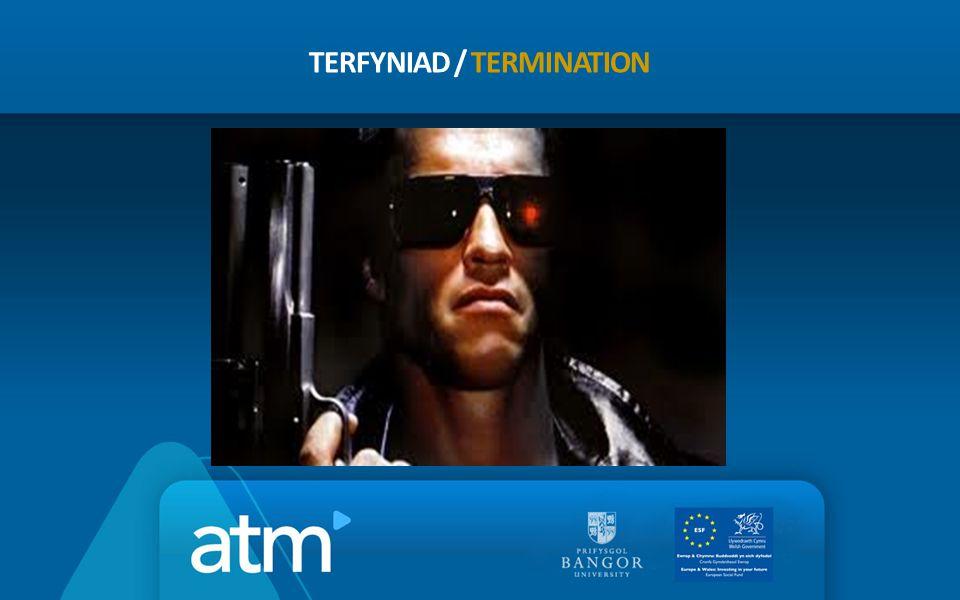 TERFYNIAD / TERMINATION