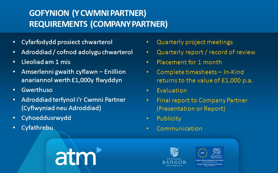 GOFYNION (Y CWMNI PARTNER) REQUIREMENTS (COMPANY PARTNER) Quarterly project meetings Quarterly report / record of review Placement for 1 month Complete timesheets – In-Kind returns to the value of £1,000 p.a.