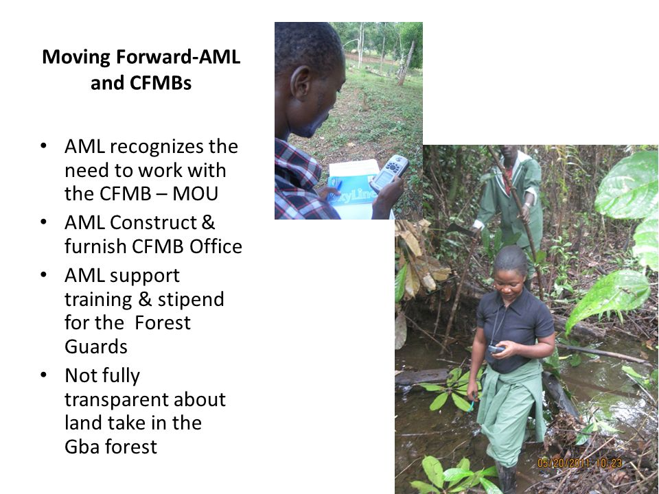 Moving Forward-AML and CFMBs AML recognizes the need to work with the CFMB – MOU AML Construct & furnish CFMB Office AML support training & stipend for the Forest Guards Not fully transparent about land take in the Gba forest