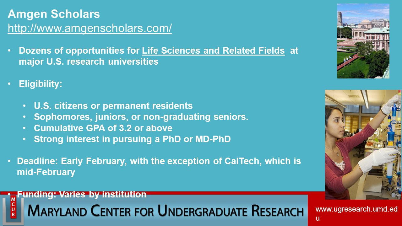 Amgen Scholars http://www.amgenscholars.com/ Dozens of opportunities for Life Sciences and Related Fields at major U.S.