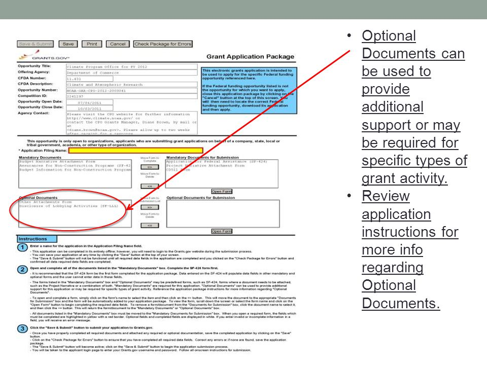 Optional Documents can be used to provide additional support or may be required for specific types of grant activity.