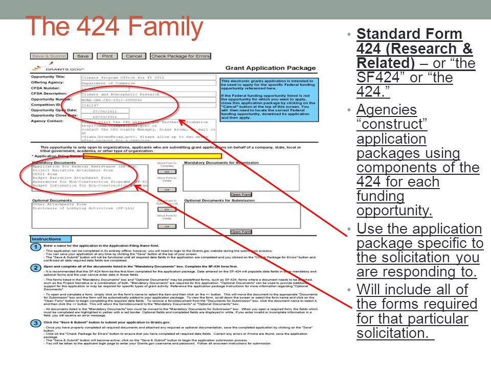 The 424 Family Standard Form 424 (Research & Related) – or the SF424 or the 424. Agencies construct application packages using components of the 424 for each funding opportunity.