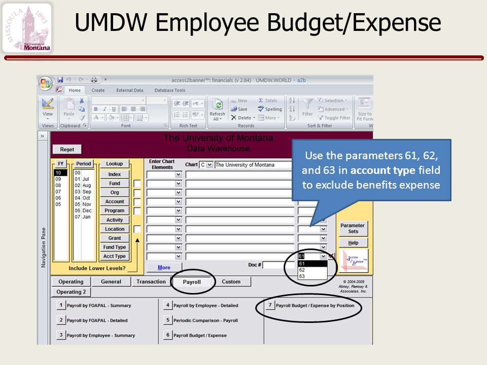 Use the parameters 61, 62, and 63 in account type field to exclude benefits expense UMDW Employee Budget/Expense