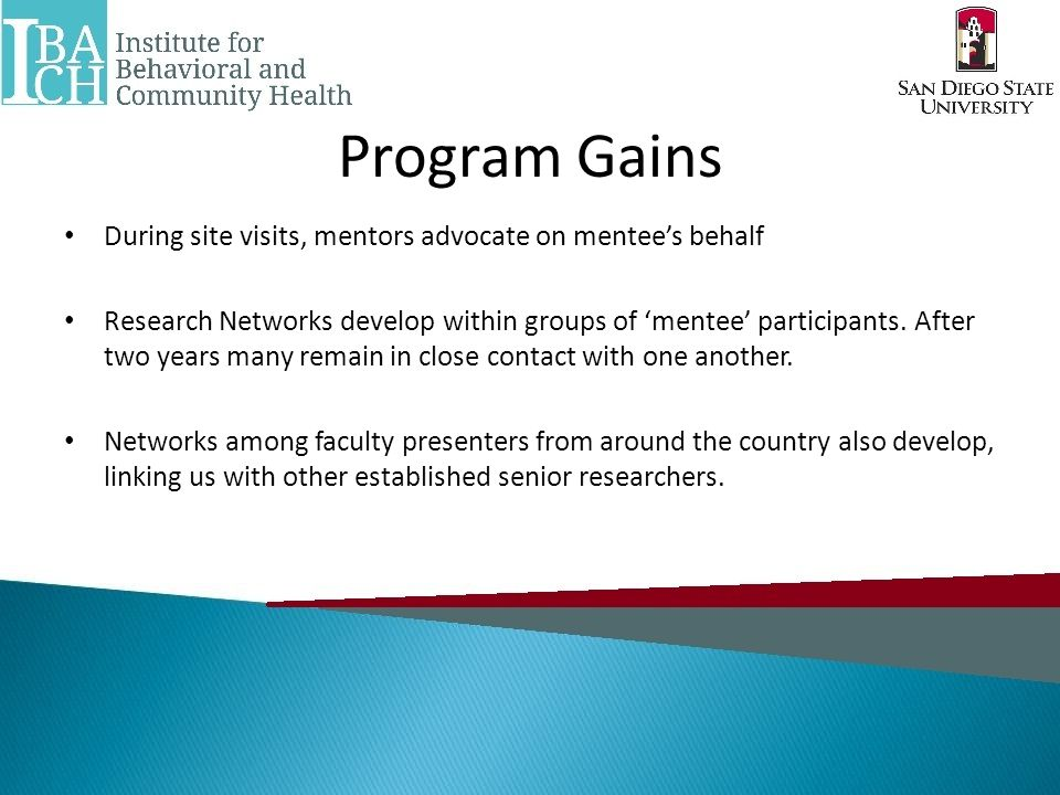 Program Gains During site visits, mentors advocate on mentee's behalf Research Networks develop within groups of 'mentee' participants.