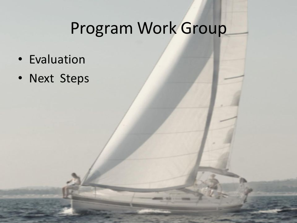Program Work Group Evaluation Next Steps