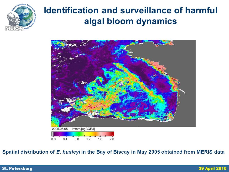 18 September 2006, St. Petersburg Identification and surveillance of harmful algal bloom dynamics Spatial distribution of E. huxleyi in the Bay of Bis