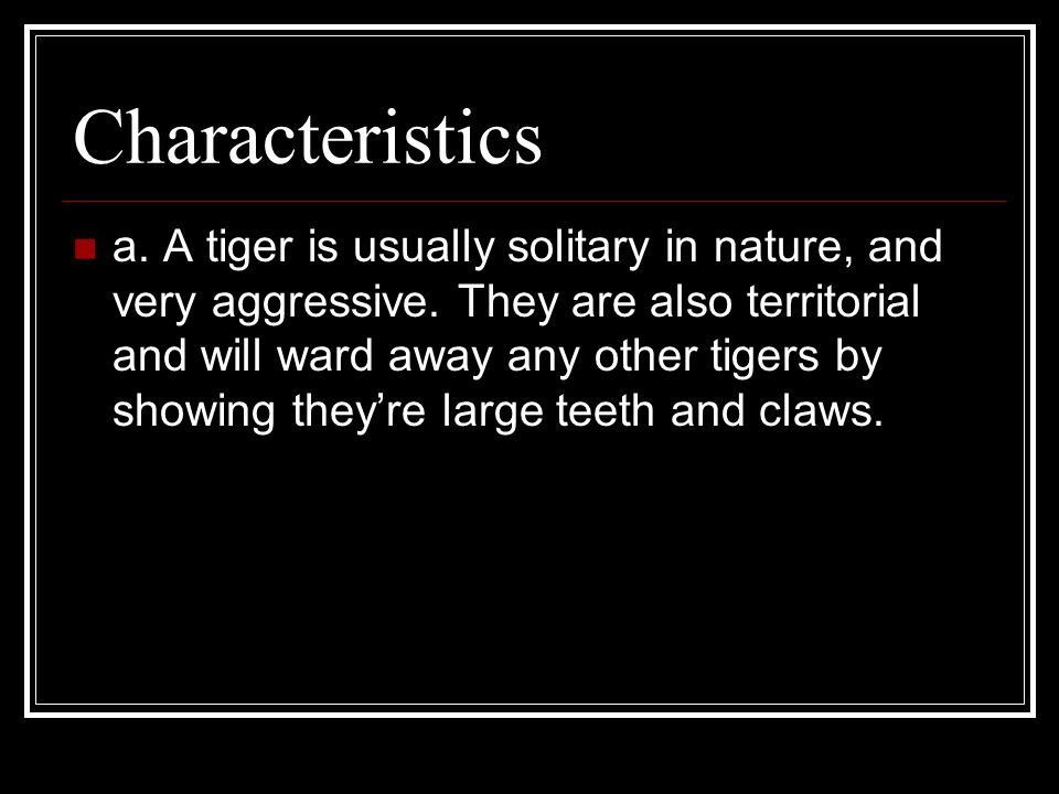 Characteristics a. A tiger is usually solitary in nature, and very aggressive.
