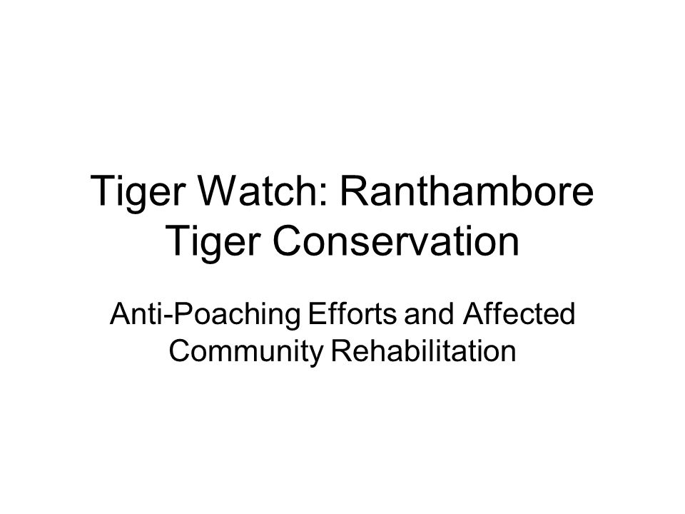 Tiger Watch: Ranthambore Tiger Conservation Anti-Poaching Efforts and Affected Community Rehabilitation