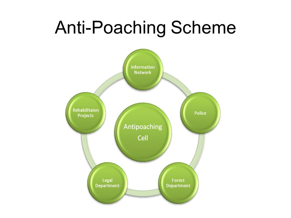 Anti-Poaching Scheme