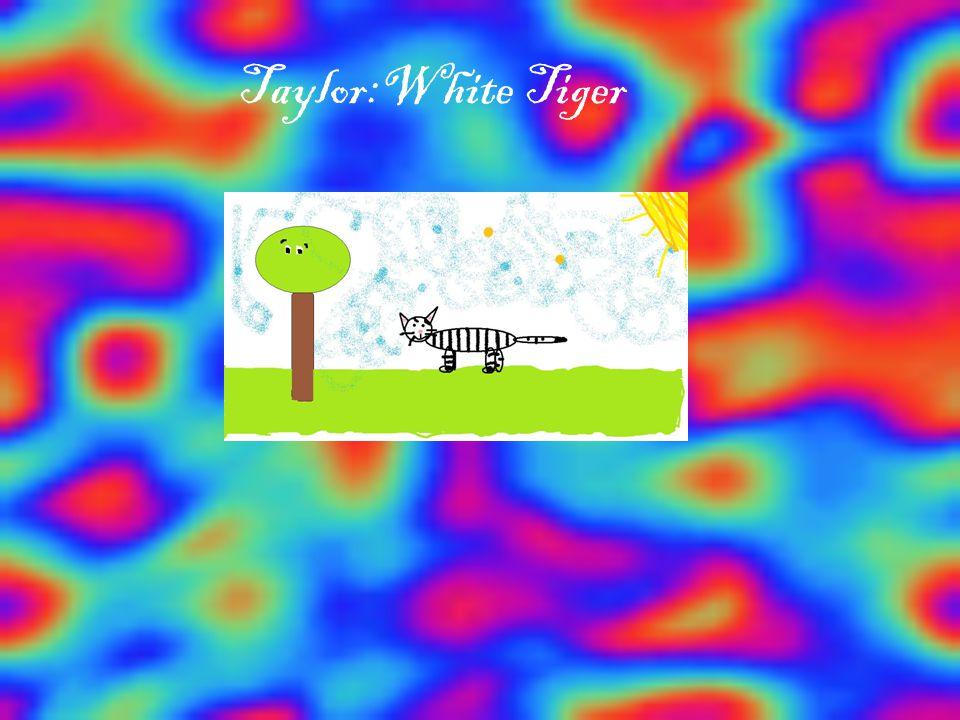 Taylor:White Tiger