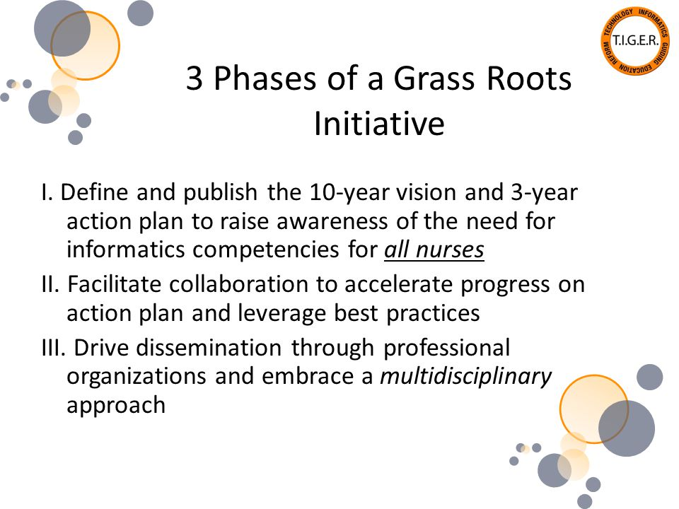 Phase I: Tiger Summit TIGER Summit – October 31, 2006 100 participants representing all stakeholders Created a collective vision for nursing practice and education within 10 years if nurses were fully enabled with IT resources Developed a 3-year action plan required to achieve this vision Summary Report 70 organizations committed to the action plan