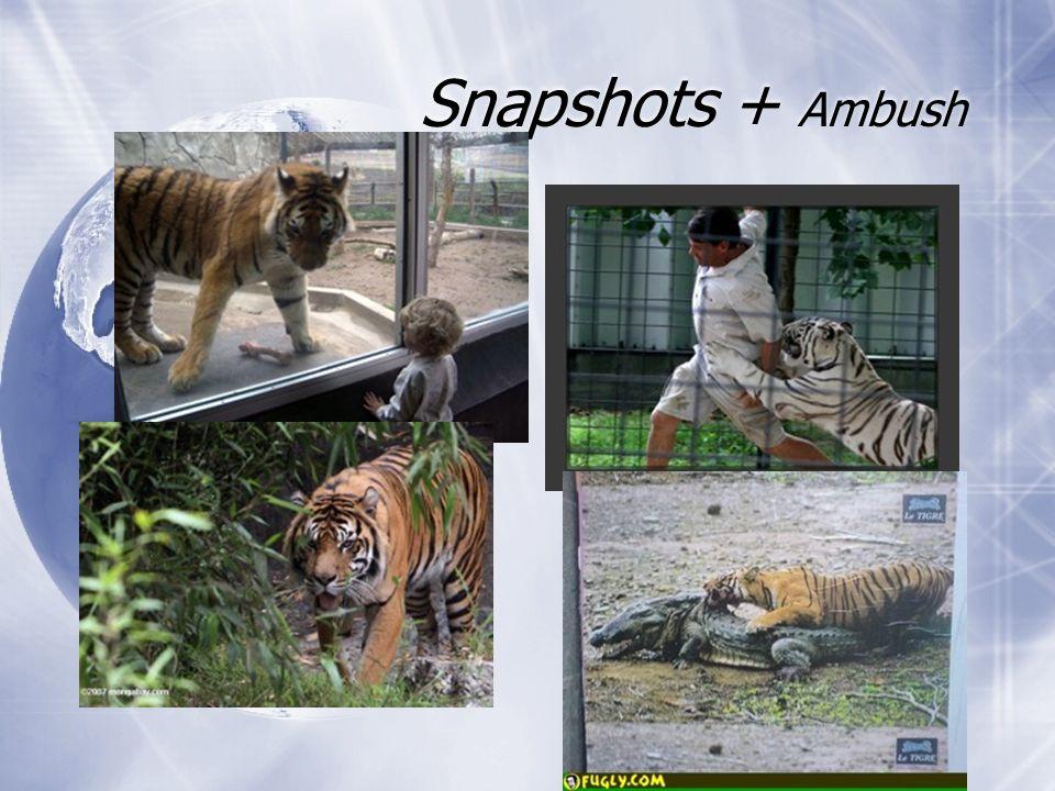 Snapshots + Ambush
