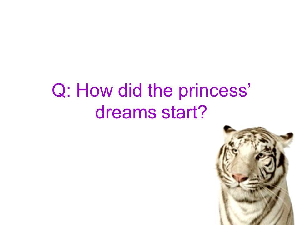 Q: How did the princess' dreams start?