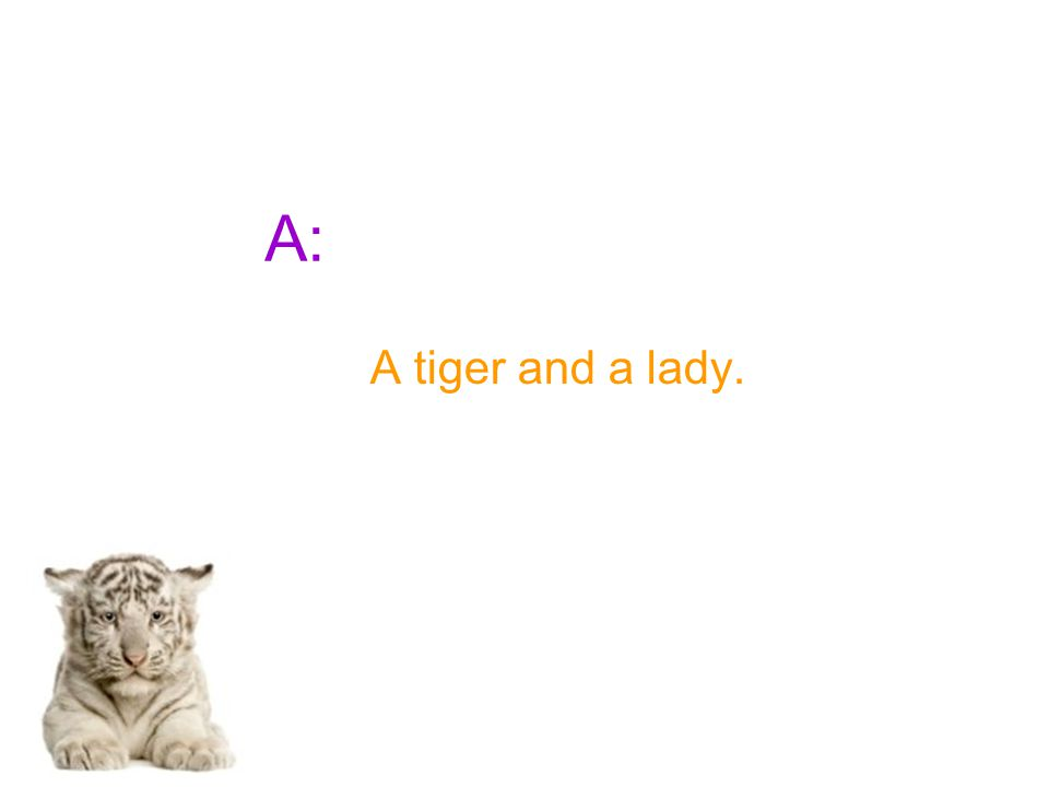 A: A tiger and a lady.