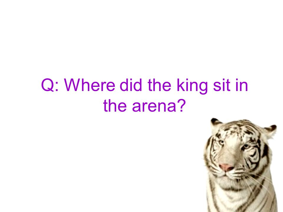 A: The king sat high up on his throne of royal state on one side of the arena.