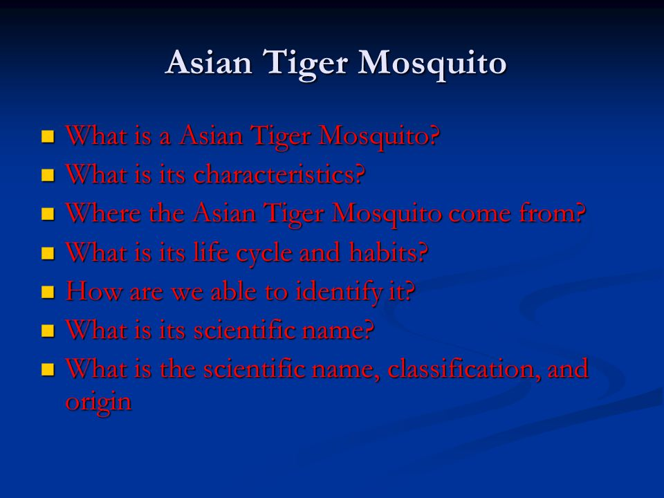 Asian Tiger Mosquito Asian Tiger Mosquito What is a Asian Tiger Mosquito? What is a Asian Tiger Mosquito? What is its characteristics? What is its cha