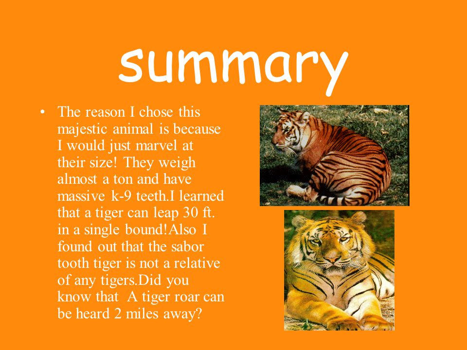 Can you help me . What are people doing to protect the bengal tiger.