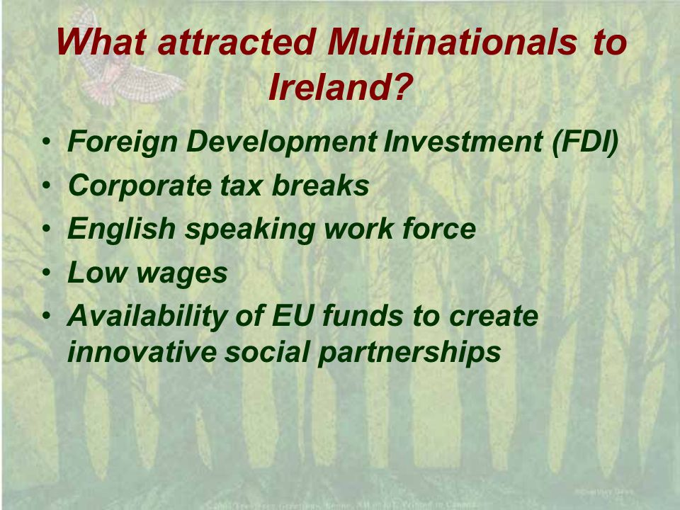 What attracted Multinationals to Ireland.