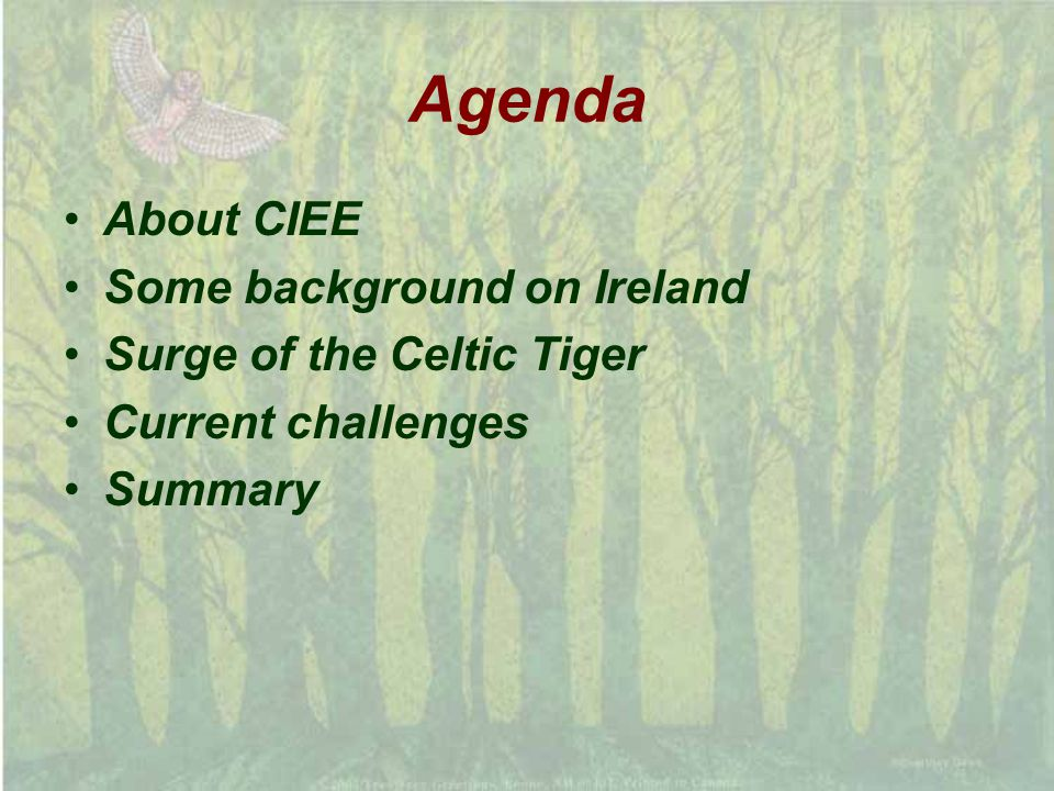 Agenda About CIEE Some background on Ireland Surge of the Celtic Tiger Current challenges Summary