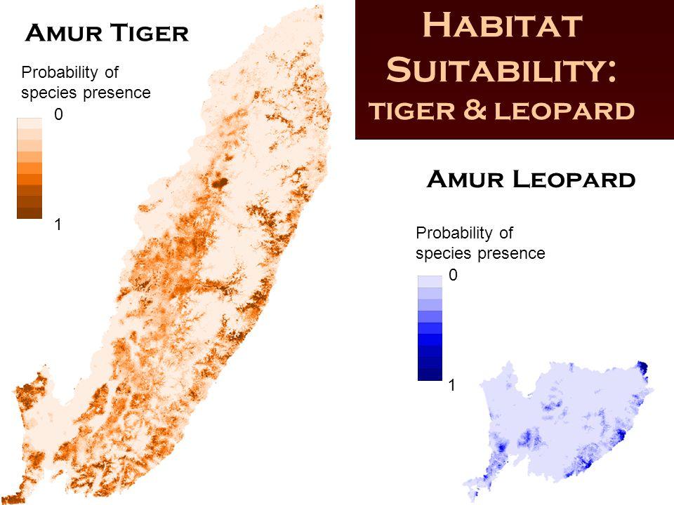 Habitat Suitability: tiger & leopard Amur Tiger Amur Leopard Probability of species presence 0 1 0 1