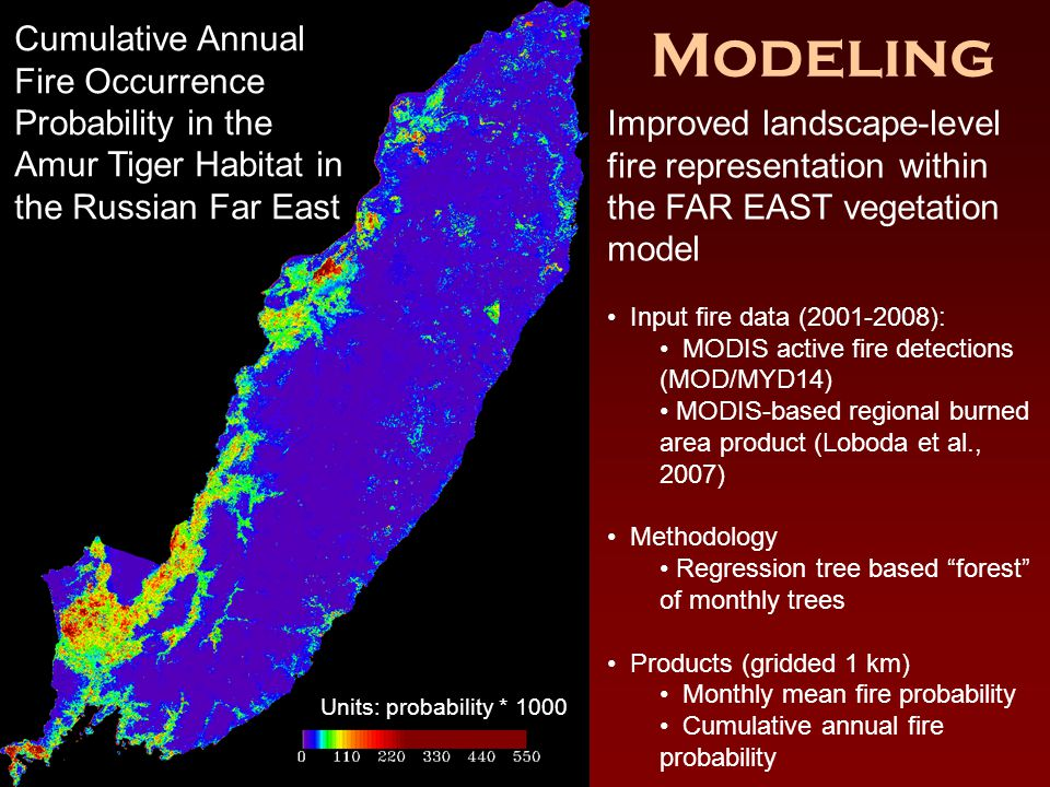 Modeling Units: probability * 1000 Cumulative Annual Fire Occurrence Probability in the Amur Tiger Habitat in the Russian Far East Improved landscape-level fire representation within the FAR EAST vegetation model Input fire data (2001-2008): MODIS active fire detections (MOD/MYD14) MODIS-based regional burned area product (Loboda et al., 2007) Methodology Regression tree based forest of monthly trees Products (gridded 1 km) Monthly mean fire probability Cumulative annual fire probability