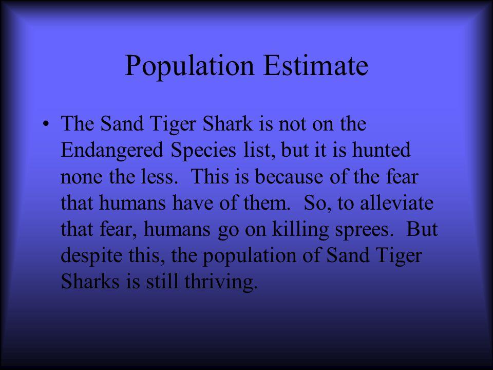 Sand Tiger Shark Classification Kingdom: Animalia Phylum: Cordata Sub Phylum: Vertebrata Class: Chondrichthyes Subclass: Elasmobranchii Order: Lamniformes Family: Odantaspiolidae Genus: Carcharias Species: Taurus
