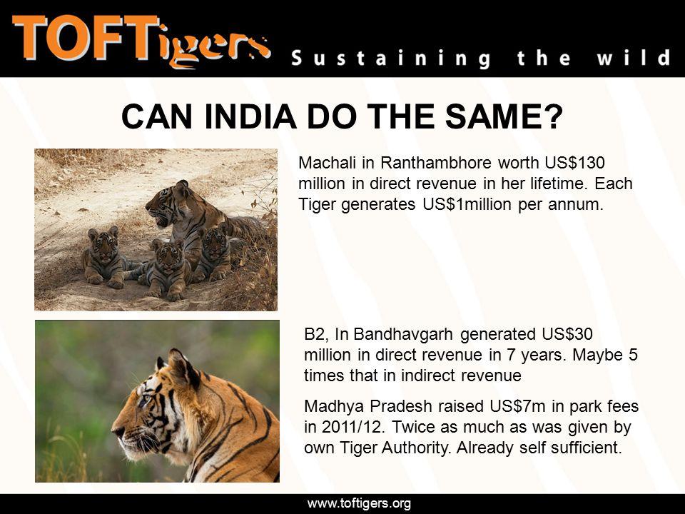 www.toftigers.org Machali in Ranthambhore worth US$130 million in direct revenue in her lifetime.