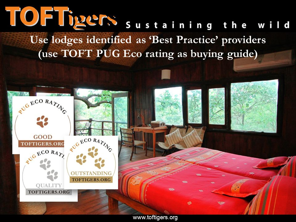 www.toftigers.org Use lodges identified as 'Best Practice' providers (use TOFT PUG Eco rating as buying guide)
