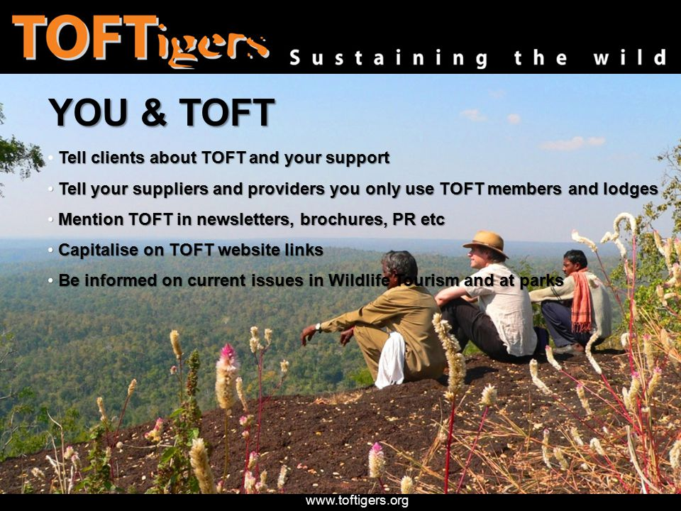 www.toftigers.org YOU & TOFT Tell clients about TOFT and your support Tell your suppliers and providers you only use TOFT members and lodges Tell your suppliers and providers you only use TOFT members and lodges Mention TOFT in newsletters, brochures, PR etc Mention TOFT in newsletters, brochures, PR etc Capitalise on TOFT website links Capitalise on TOFT website links Be informed on current issues in Wildlife Tourism and at parks Be informed on current issues in Wildlife Tourism and at parks