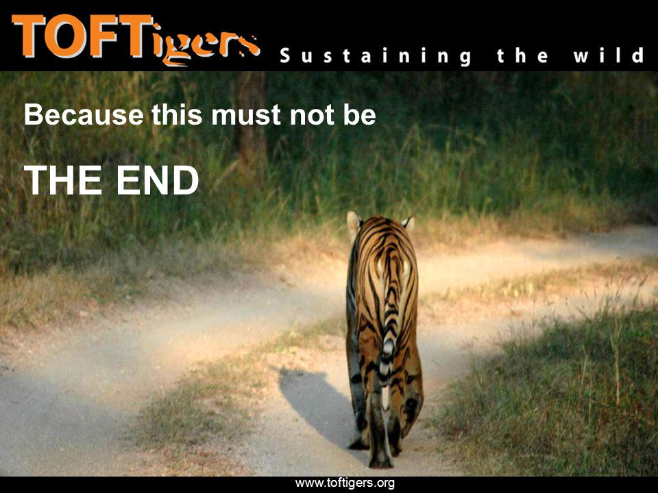 www.toftigers.org Because this must not be THE END