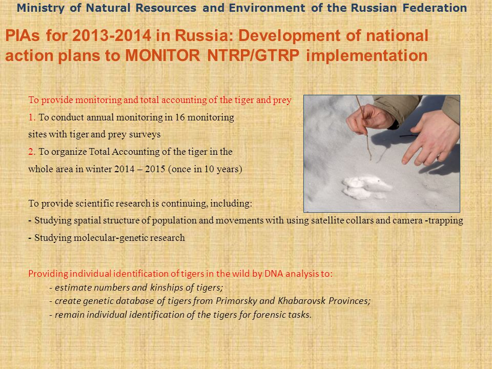 PIAs for 2013-2014 in Russia: Development of national action plans to MONITOR NTRP/GTRP implementation To provide monitoring and total accounting of the tiger and prey 1.