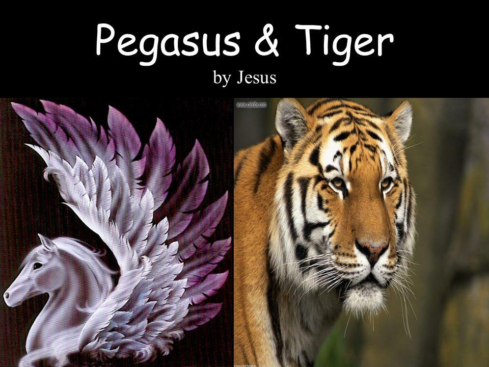 Pegasus & Tiger by Jesus