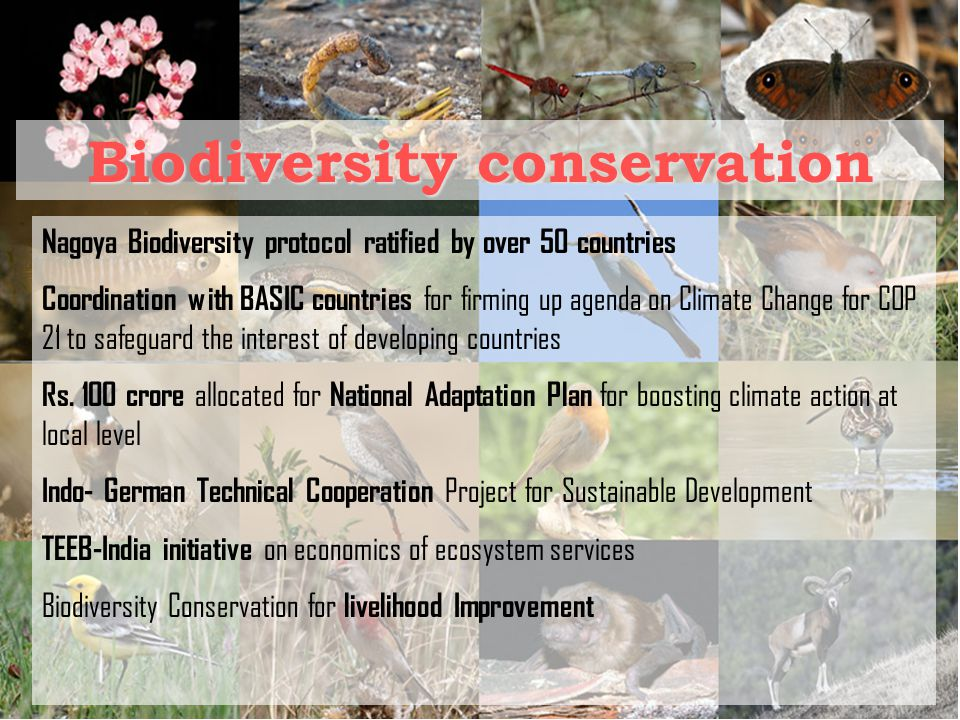 Biodiversity conservation Nagoya Biodiversity protocol ratified by over 50 countries Coordination with BASIC countries for firming up agenda on Climate Change for COP 21 to safeguard the interest of developing countries Rs.