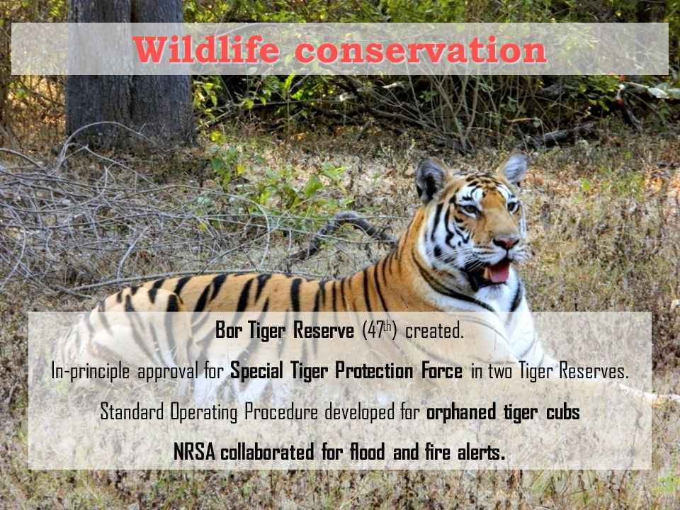 Wildlife conservation Bor Tiger Reserve (47 th ) created.