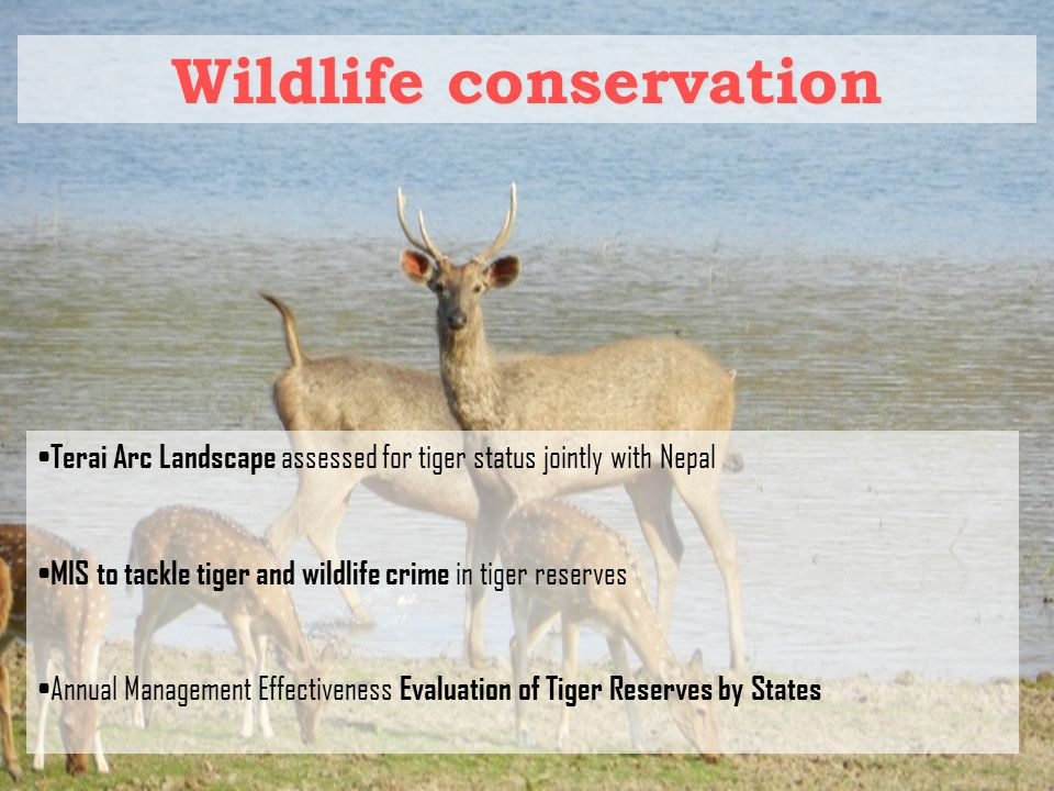 Wildlife conservation Terai Arc Landscape assessed for tiger status jointly with Nepal MIS to tackle tiger and wildlife crime in tiger reserves Annual Management Effectiveness Evaluation of Tiger Reserves by States
