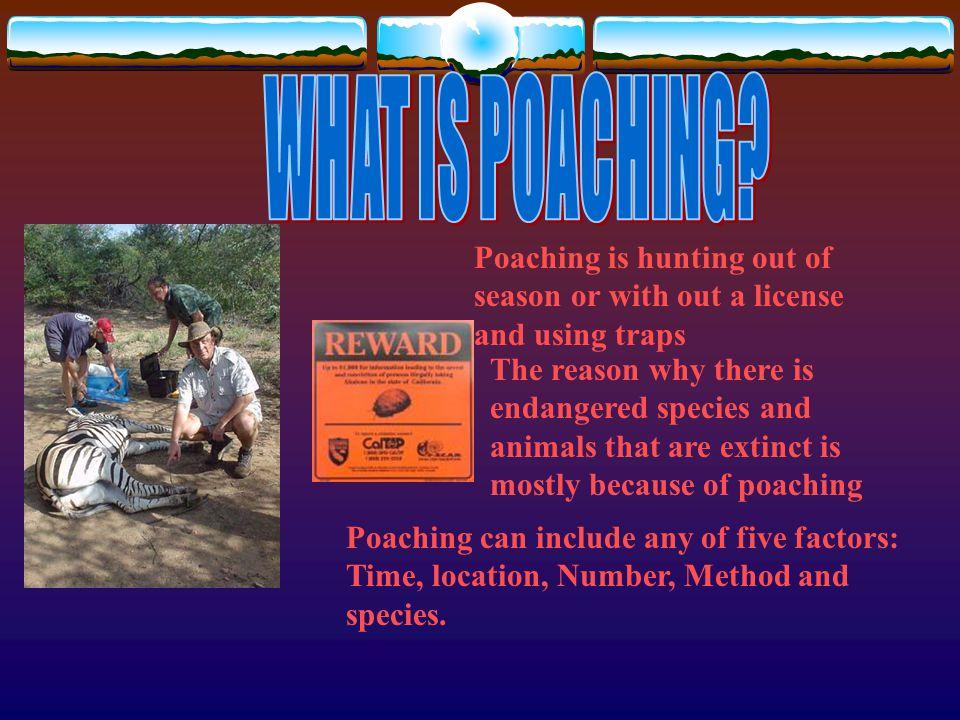 http://www.mnr.gov.on.ca/MNR/fishing/poach.html http://www.michigan.gov/dnr/1,1607,7-153-10366_15383- 31706--,00.html http://wdfw.wa.gov/enf/poaching.htm http://www.deer-uk.com/poaching.htm