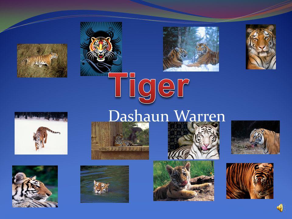 Dashaun Warren