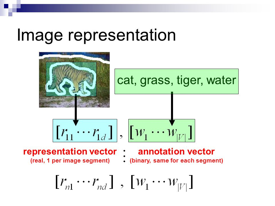 Image representation cat, grass, tiger, water annotation vector (binary, same for each segment) representation vector (real, 1 per image segment)