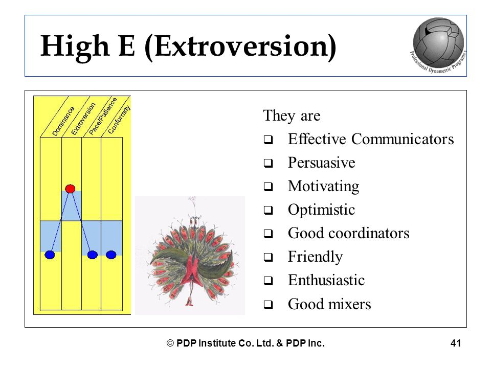 © PDP Institute Co. Ltd. & PDP Inc.41 They are  Effective Communicators  Persuasive  Motivating  Optimistic  Good coordinators  Friendly  Enthu