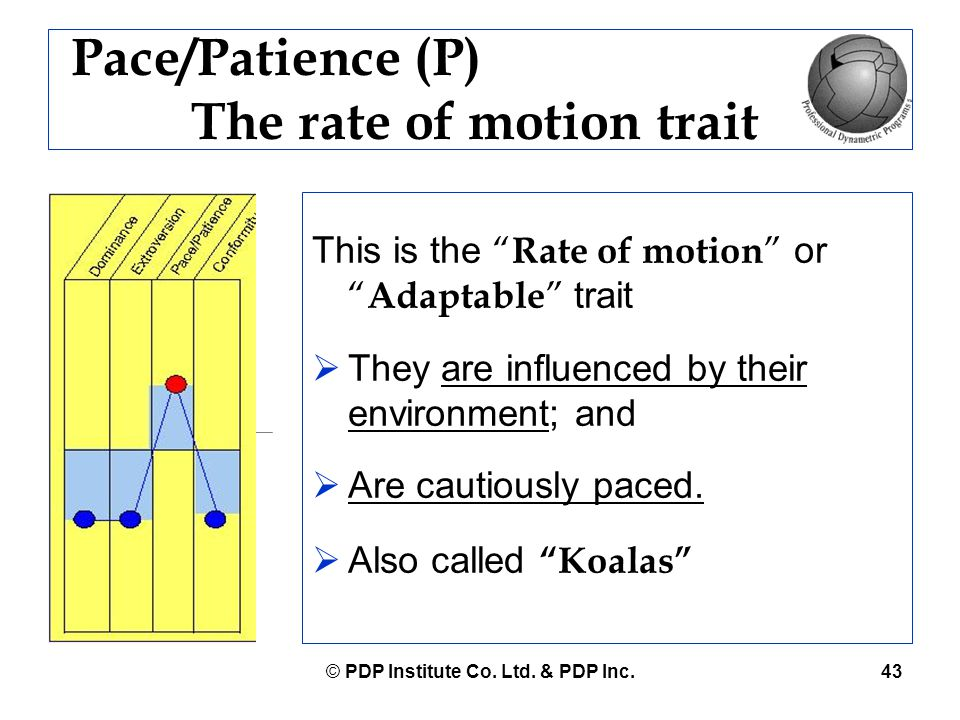 """© PDP Institute Co. Ltd. & PDP Inc.43 Pace/Patience (P) The rate of motion trait This is the """" Rate of motion """" or """" Adaptable """" trait  They are infl"""