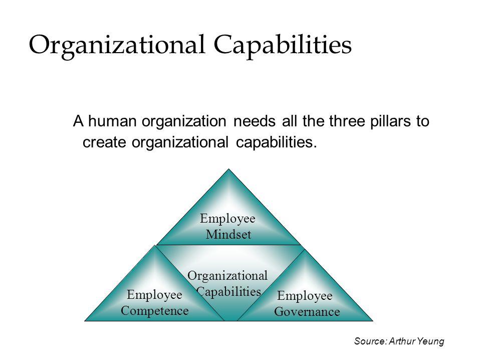 Organizational Capabilities A human organization needs all the three pillars to create organizational capabilities. Organizational Capabilities Employ