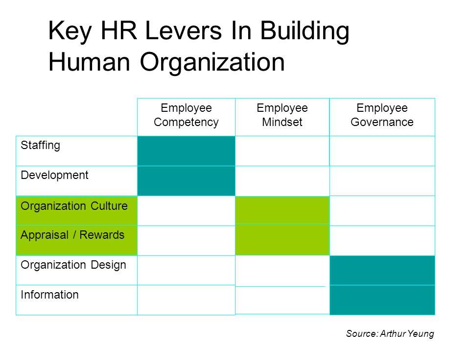 Key HR Levers In Building Human Organization Information Organization Design Organization Culture Appraisal / Rewards Development Staffing Employee Go