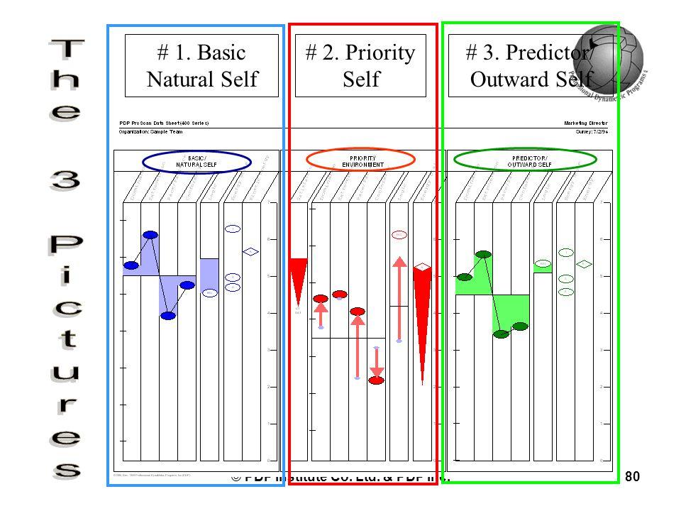 © PDP Institute Co. Ltd. & PDP Inc.80 # 1. Basic Natural Self # 2. Priority Self # 3. Predictor/ Outward Self