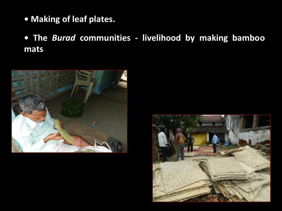 Making of leaf plates. The Burad communities - livelihood by making bamboo mats