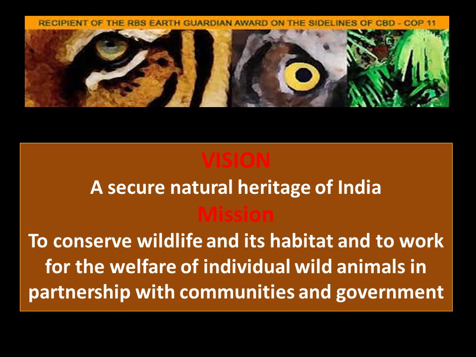 VISION A secure natural heritage of India Mission To conserve wildlife and its habitat and to work for the welfare of individual wild animals in partnership with communities and government