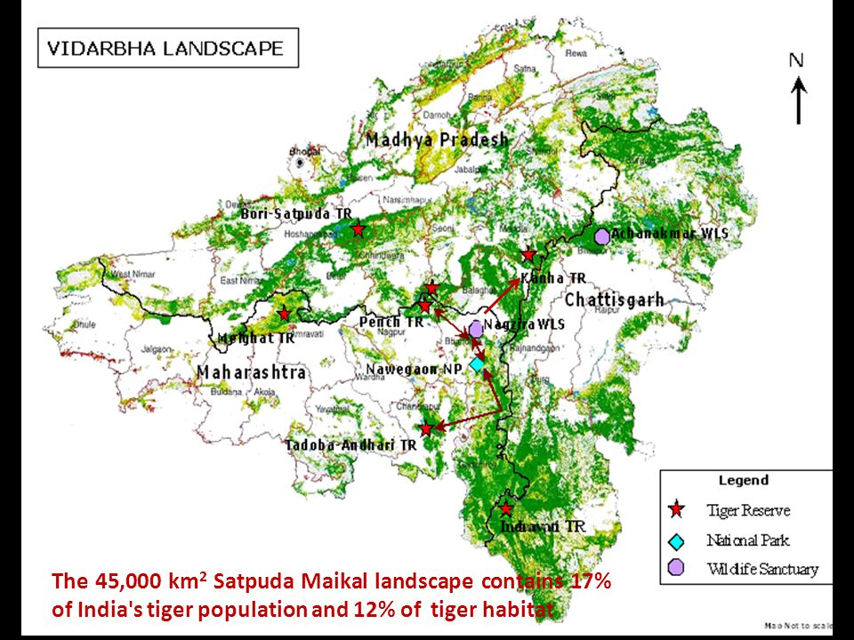 The 45,000 km 2 Satpuda Maikal landscape contains 17% of India s tiger population and 12% of tiger habitat