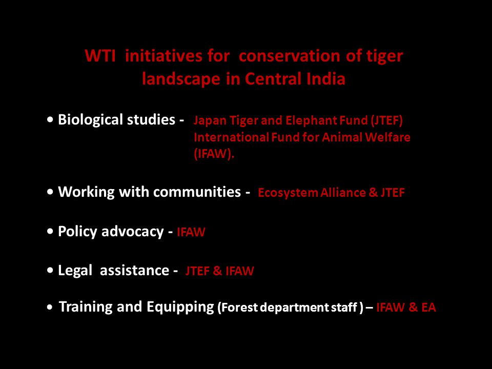 WTI initiatives for conservation of tiger landscape in Central India Biological studies - Japan Tiger and Elephant Fund (JTEF) International Fund for Animal Welfare (IFAW).