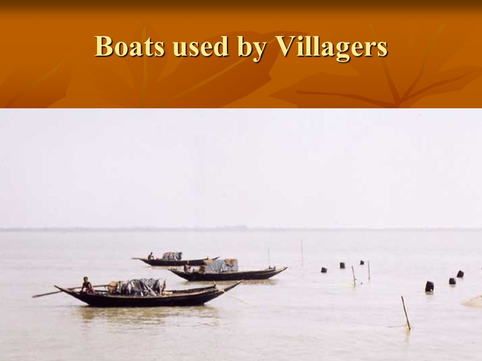 Boats used by Villagers