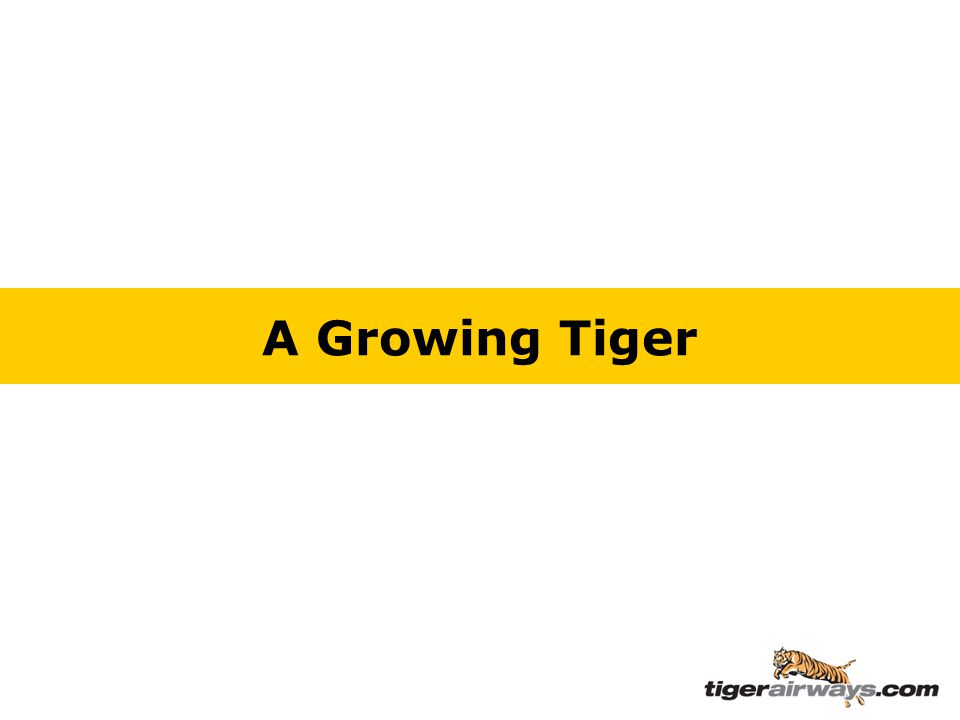 A Growing Tiger